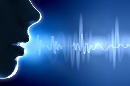 Sound Establish